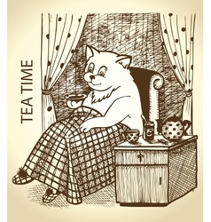 Cat drinking tea vector image