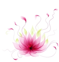Abstract pink lotus flower vector image