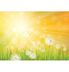 Spring background yellow vector