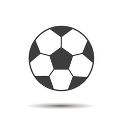 coccer ball vector image vector image