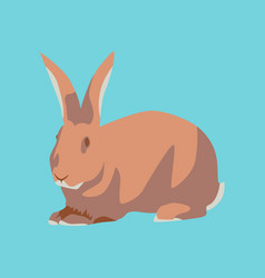 in flat style rabbit vector image