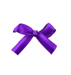 realistic purple bow vector image