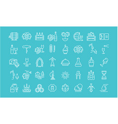 set flat line icons wine vector image