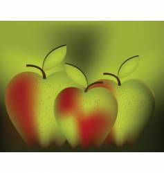 apples design vector image