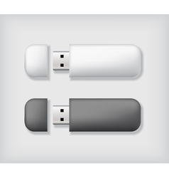 Two usb memory sticks mockup vector