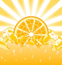 Orange splash vector