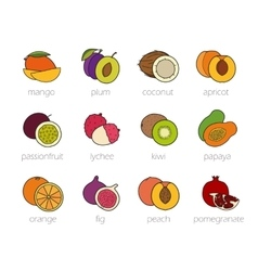 Fruits color icons set vector