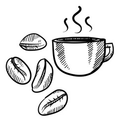 doodle coffee beans vector image vector image