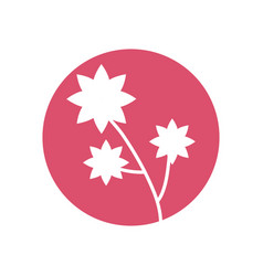 flower natural decoration icon vector image