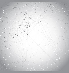 low poly design with connecting dots vector image vector image