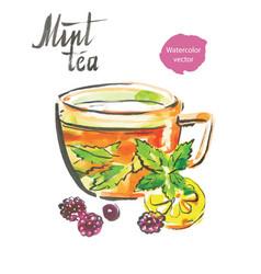 mint tea watercolor vector image