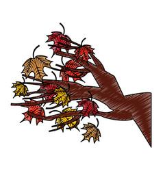 tree branch floral icon vector image vector image