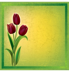 abstract green grunge background with red tulips vector image