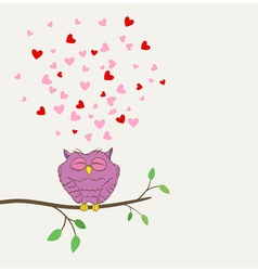 owl in love dreaming vector image