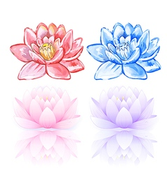 Pink and blue lotus vector
