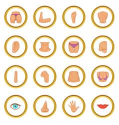 Body parts icons circle vector