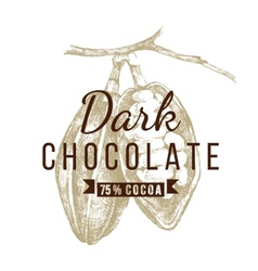 dark chocolate logo template vector image
