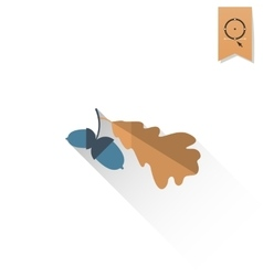 Two acorn with oak leaves vector
