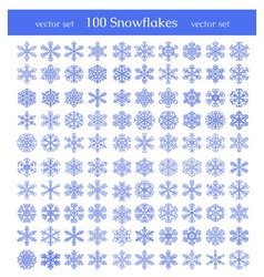 Isolated snowflakes on white background vector image