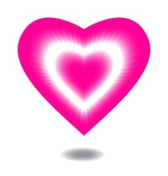 pink valentine heart on white background vector image