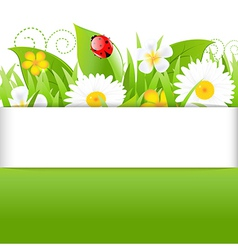 Poster With Grass Leafs And Ladybug vector image vector image