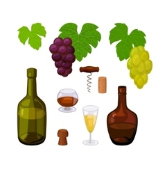 Set of color winery icons vector