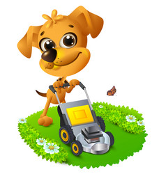 Yellow fun dog mowing lawn vector