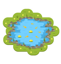 Cartoon garden pond with water plants and vector