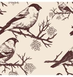 Seamless bullfinch pattern Hand drawn vector image vector image