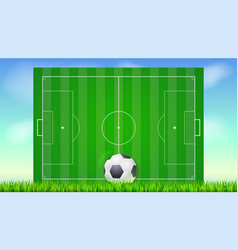 soccer field with grass and ball on blue backdrop vector image