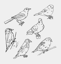 Birds engraved style stamp seal simple sketch vector