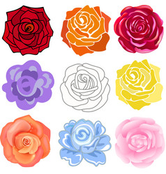 Varicolored roses set vector