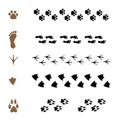 Set of brushes in the form of animal tracks vector