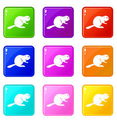 Canadian beaver icons 9 set vector