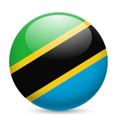 Round glossy icon of tanzania vector