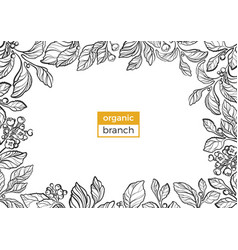 template organic branch 2 vector image vector image