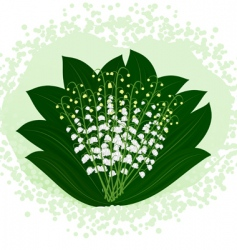 lilies of the valley vector image vector image