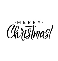 Merry christmas calligraphy template greeting vector