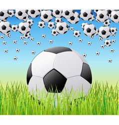 soccer balls vector image vector image
