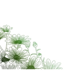 Daisy flowers on a green background outline vector image