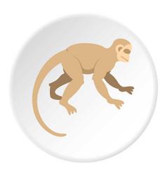 White capuchin icon circle vector