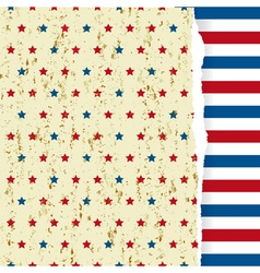 American striped pattern vector image