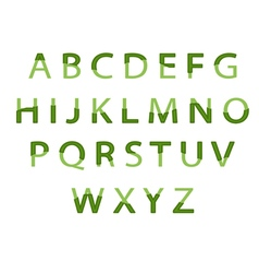 eco alphabet vector image