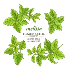 melissa set vector image vector image