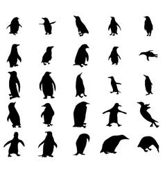 Penguin silhouettes set vector