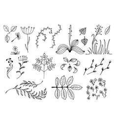 Set of black hand drawn floral design elements vector
