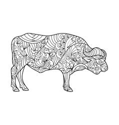 Buffalo animal coloring book for adults vector