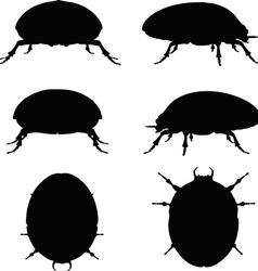 Bug scarab silhouette vector