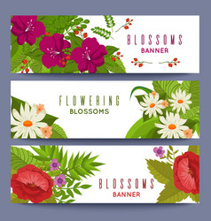 floral banners template with colorful flowers vector image vector image