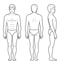Male figure vector
